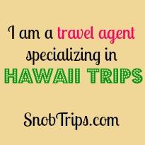 snob trips travel agent