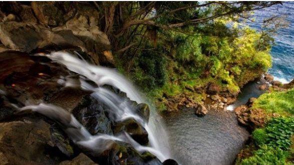 hawaiian home with waterfall