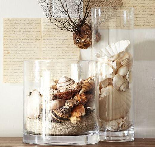 beach shell vases