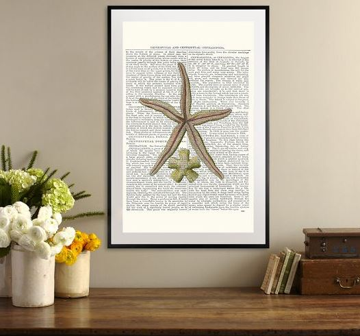 framed starfish print