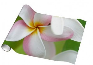 plumeria hawaiian gift wrapping paper