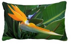 sofa pillow bird of paradise