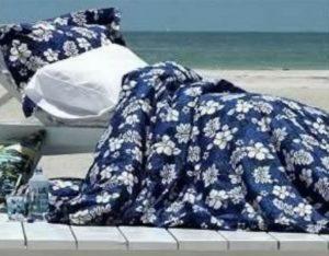 hawaiian blue bedding