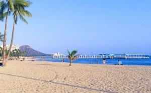 hawaii travel sale