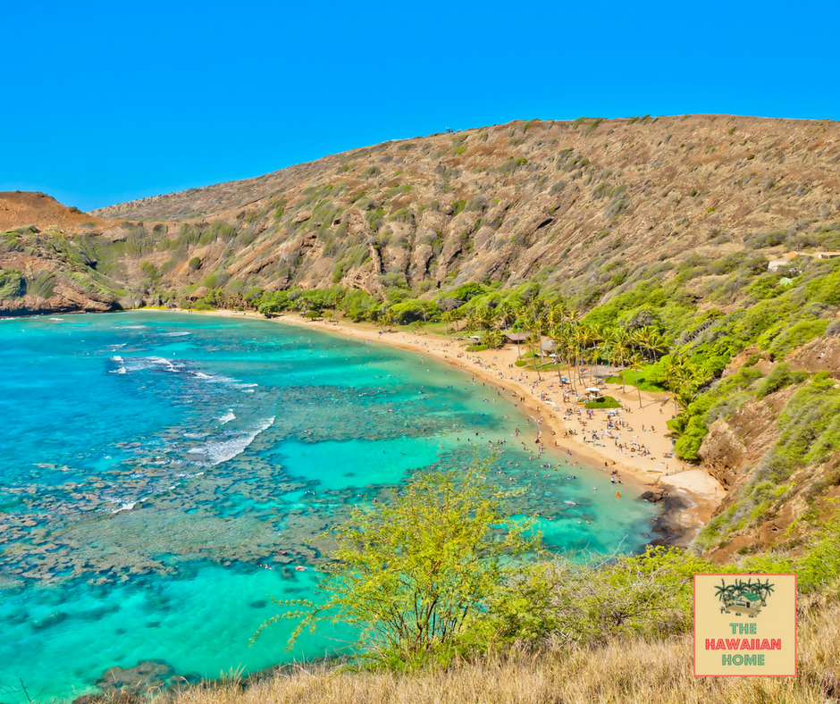 Top 10 Places to Snorkel in Hawaii