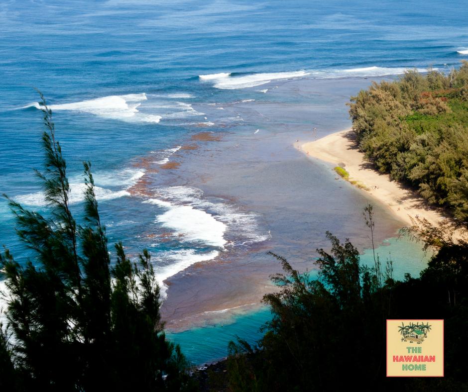 Ke'e Beach park snorkeling Kauai