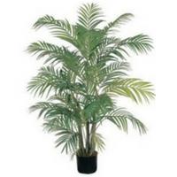 hawaiian style plants